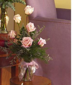 Other Country Roses Other Country,:1/2 dozen pink Roses