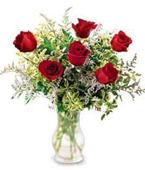 Micronesia Valentine's Day (Feb 10-15) Micronesia,Other State:1/2 Dz Rose