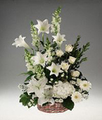 Antigua Sympathy Antigua,:Sympathy Basket arrangement of mixed white flowers