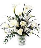 Barbados White Flowers Barbados,:New White Callas Bouquet