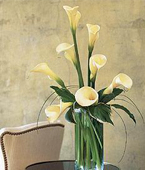 Cayman Islands White Flowers Cayman Islands,:White Callas