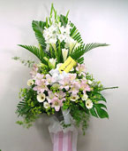 Taiwan Flower Taiwan Florist  Taiwan  Flowers shop Taiwan flower delivery online  :Tribute