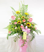 Taiwan Flower Taiwan Florist  Taiwan  Flowers shop Taiwan flower delivery online  :Vibrance and Enthusiasm
