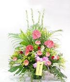Taiwan Flower Taiwan Florist  Taiwan  Flowers shop Taiwan flower delivery online  :Prosperous