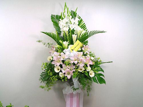 Livraison Fleurs Taiwan fleuriste Taiwan,fleurs de Taiwan Livraison fleurs Taiwan:LocalStreets:Tribute