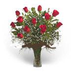 UAE Arrangements UAE,:12 Red Roses in a Vase