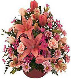Livraison Fleurs Émirats arabes unis fleuriste Émirats arabes unis,fleurs de Émirats arabes unis Livraison fleurs Émirats arabes unis:LocalStreets:Love Surprise!