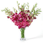 UAE Flower UAE Florist  UAE  Flowers shop UAE flower delivery online  :Love is in the Air!