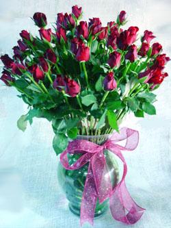 Livraison Fleurs Émirats arabes unis fleuriste Émirats arabes unis,fleurs de Émirats arabes unis Livraison fleurs Émirats arabes unis:LocalStreets:Extravaganza