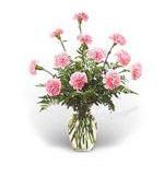 UAE Arrangements UAE,:Pink Carnations