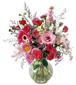 Livraison Fleurs Canada fleuriste Canada,fleurs de Canada Livraison fleurs Canada:LocalStreets:The FTD?Splendid Day