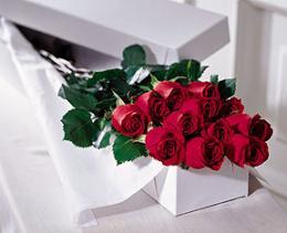 Livraison Fleurs Canada fleuriste Canada,fleurs de Canada Livraison fleurs Canada:LocalStreets:The FTD?One Dozen Boxed Roses