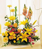 Vancouver Flower Vancouver Florist  Vancouver  Flowers shop Vancouver flower delivery online  British Columbia,BC:Celebrate in Style