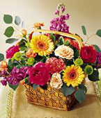 Canada Flower Canada Florist  Canada  Flowers shop Canada flower delivery online  ,:Razzle-Dazzle