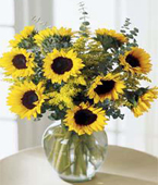 Canada Flower Canada Florist  Canada  Flowers shop Canada flower delivery online  ,:The FTD?Endless Sunflower