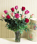 Vancouver Flower Vancouver Florist  Vancouver  Flowers shop Vancouver flower delivery online  British Columbia,BC:A Dozen Multi-Colored Roses