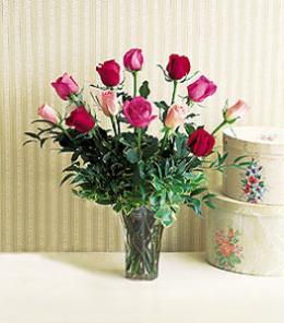 Livraison Fleurs Canada fleuriste Canada,fleurs de Canada Livraison fleurs Canada:LocalStreets:A Dozen Multi-Colored Roses