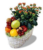 Montreal Gourmet Baskets Montreal,Québec,:The FTD?Fruits & Flowers