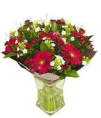 Israel Flower Israel Florist  Israel  Flowers shop Israel flower delivery online  :Blossom in red