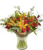 Israel Flower Israel Florist  Israel  Flowers shop Israel flower delivery online  :Exotic