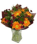 Israel Flower Israel Florist  Israel  Flowers shop Israel flower delivery online  :Little Flame