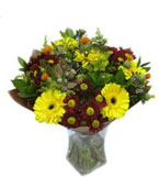 Israel Flower Israel Florist  Israel  Flowers shop Israel flower delivery online  :Savanna