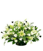 Israel Flower Israel Florist  Israel  Flowers shop Israel flower delivery online  :Beautiful in white
