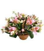 Israel Flower Israel Florist  Israel  Flowers shop Israel flower delivery online  :Harmony