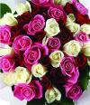 China Flower China Florist  China  Flowers shop China flower delivery online  ,China:Love & romance in china 15